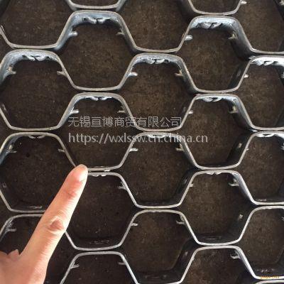 无锡亘博六角形大泥爪龟甲网加工定制厂家销售