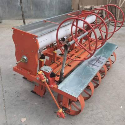 山西小型谷子播种机 启航牌蔬菜种子专用精播机 大葱种植机