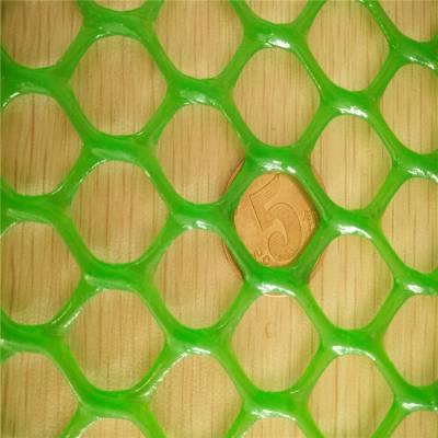 鸡鸭鹅育雏网 育苗塑料平网 塑料平网生产厂家
