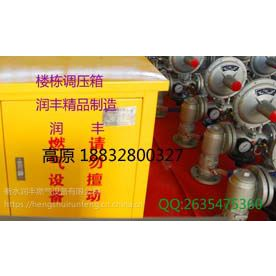 楼栋调压柜RX-40Q单元燃气调压箱国标厂家