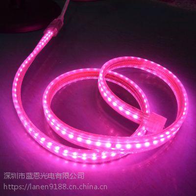 植物生长灯 深圳厂家直销2835灯一米