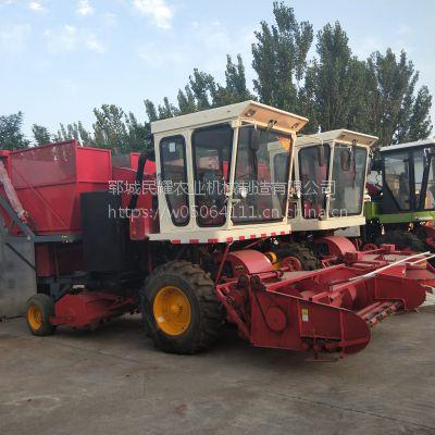 大型地滚刀式秸秆青贮机视频 多功能玉米秸秆收割青储机 牧草式割机