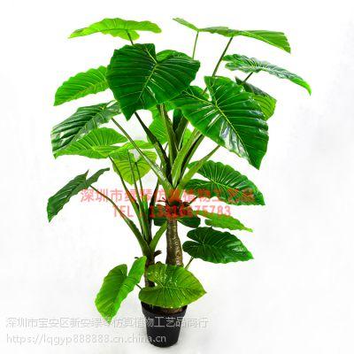 深圳绿琴直销 仿真盆栽摆件 客厅室内阳台装饰摆件 盆栽假绿色绢花植物