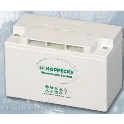 进口蓄电池德国荷贝克24OPZV3000价格