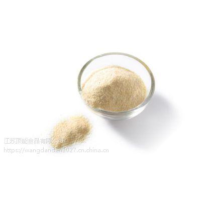 大蒜粉 脱水蔬菜粉 纯大蒜特级 食品 调味料 厂家直销 散装批发