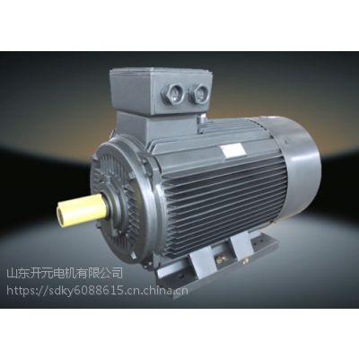 供应YE2 三相异步电机/风机水泵专用/山东开元