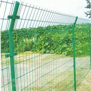 安平厂家直销 铁丝网围栏安全防护隔离栅 双边丝护栏网送立柱