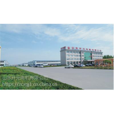 供应山东开元电机公司 三相异步电动机 YE 225M-6高效节能 028170