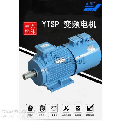 YTSP变频电机