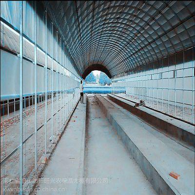 新旺兴农镀锌刚管保温大棚7516种植大棚建设