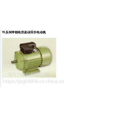 YL系列单相电容起动异步电动机