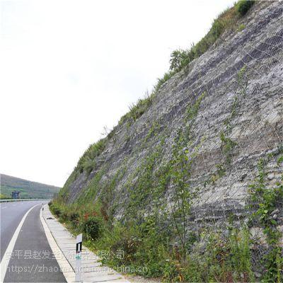 公路边坡防护网_公路边坡防护网厂家_高速护坡网