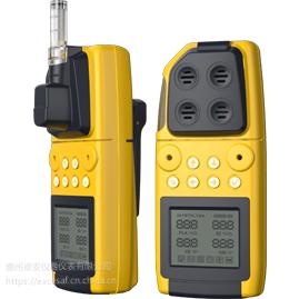 H1/HP1特安便携气体探测器