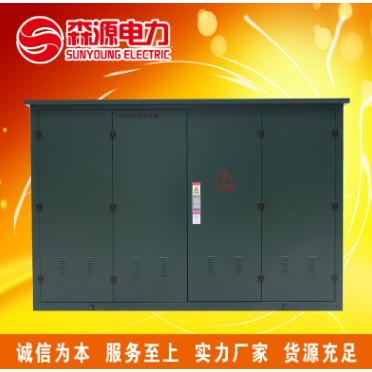 SYST江西森源10kv高压电缆分支箱 DFW-12 一进三出
