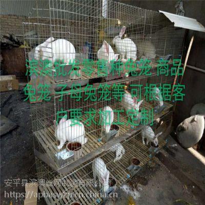 供应山东济宁鸡鸽兔笼 群鸟笼 鹌鹑笼 八哥笼 运输宠物笼 仓鼠笼 运输筐 折叠笼