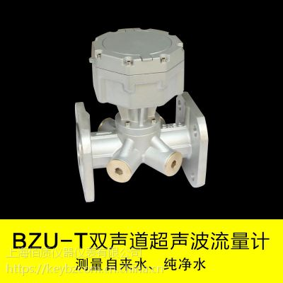 上海佰质厂家供应BZU-T双声道超声波流量计不锈钢材质原装现货
