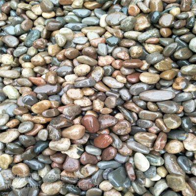 河北驰霖供应各种鹅卵石 公园铺路石 纯天然 黑色/白色鹅卵石