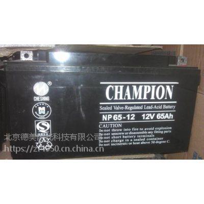 广东志成CHAMPION蓄电池NP100-12详细参数及报价