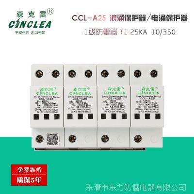 大量供应 CCL-A25 一级10/350电涌保护器 厂家直销