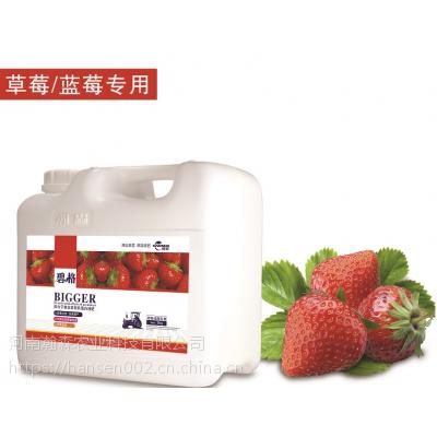 草莓增产专用 碧格进口有机蛋白液肥