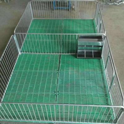 重庆养猪场仔猪保育床生产厂家|镀锌管材保育床价格