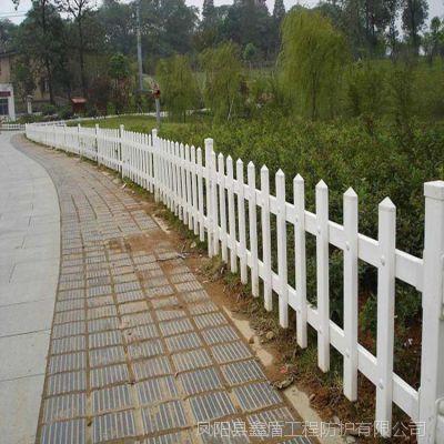 浙江宁波北仑 塑钢护栏网厂家直销园林围栏价格