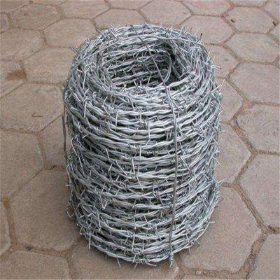 镀锌带刺铁丝网 包塑刺绳护栏网 监狱围墙防护网