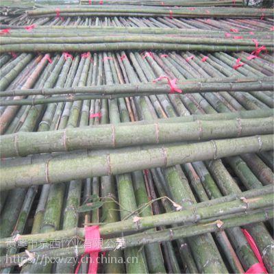 批发6米7米8米9米10米大棚竹竿