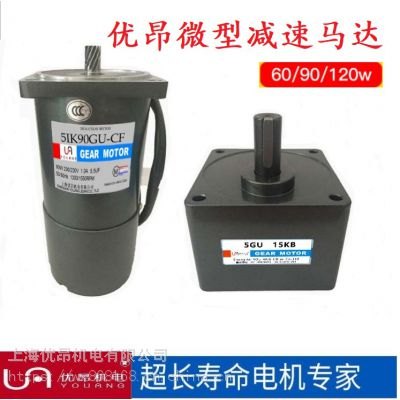河北厂家直销微型交流减速电机,调速电机5IK40GN 40W减速电机220V