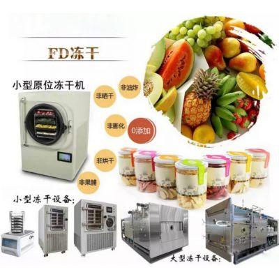 冻干机厂家 食品冻干机,大昌牌