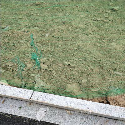 绿化防尘盖土网 渣土覆盖网 施工道路绿化网