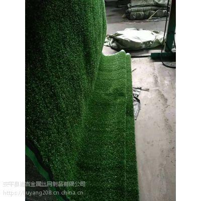 迪吉厂家供应 草坪围挡 PE体育场 人工假草 草坪网