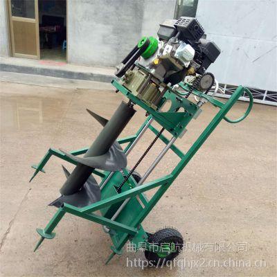 多功能植树打坑机 手推式打孔机 葡萄园大棚立杆挖坑机价格