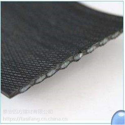 CAT钢塑复合拉筋带厂家 钢塑土工加筋带挡土墙施工
