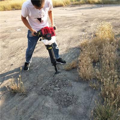 移果树机挖树机厂家批发 汽油链条式挖树机
