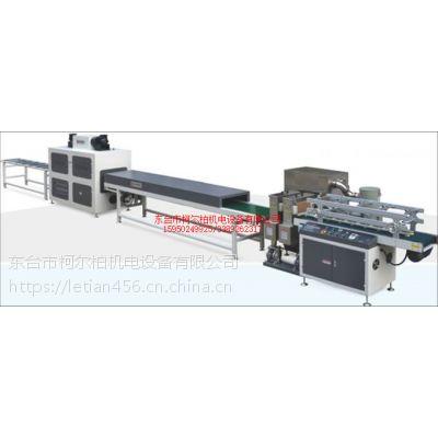 自动化喷涂生产线 环保涂装生产线涂装设备 喷涂生产线uv流水线