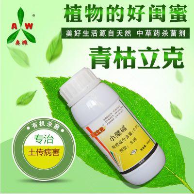 圣女果青枯病专用药植物源杀菌剂厂家