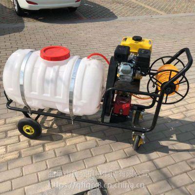 树木病虫防治打药机 手推喷雾器价格 自走式消毒机