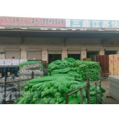 绿色盖土网生产厂家绿萝网业