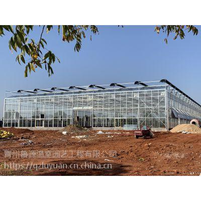 河北沧州有机蔬菜种植大棚温室玻璃型基地3万平方、地基深埋1米型定制厂家