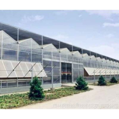 阳光板温室大棚|阳光板温室大棚供应商