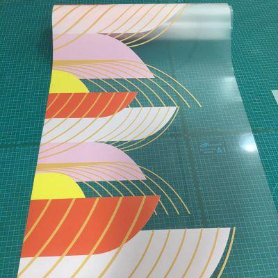 清水河厂家定制超透膜写真UV打印 透明画面打印彩白