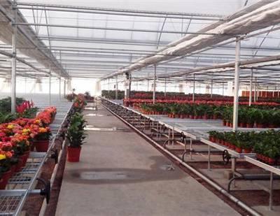 质优价廉花卉苗床/山西专业移动苗床制作-华耀农业