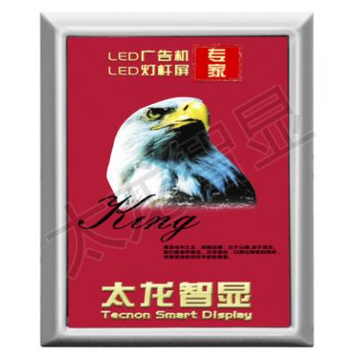 太龙智显灯杆屏,智慧路灯屏,LED广告屏专业厂家-P2.94 29寸