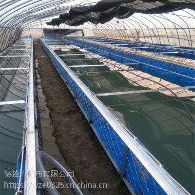 定做养殖帆布水池帆布鱼池篷布养鱼池防水帆布罩_帆布水池厂家