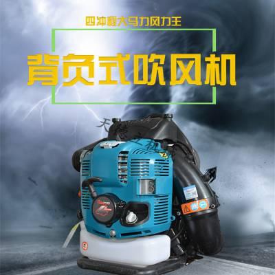 天德立四冲程汽油背式吹风机 3KW背负式吹风机9800 吹雪机