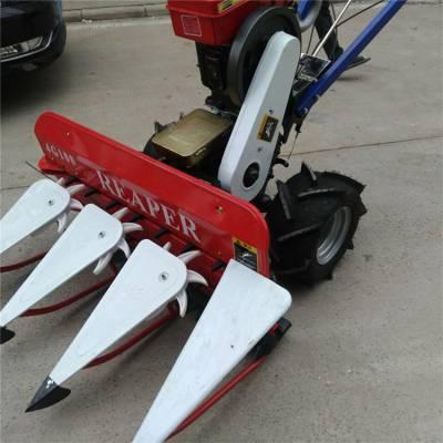 黑麦草小型收割机 农用柴油苜蓿收割机