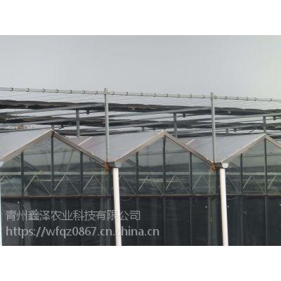 顶部阳光板四周玻璃的餐厅温室图片