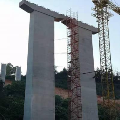 宁河安全爬梯 通达安全爬梯梯笼 桥梁安全爬梯厂家