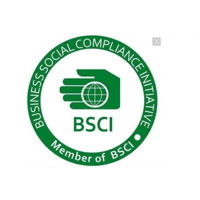 bsci认证审核执行程序